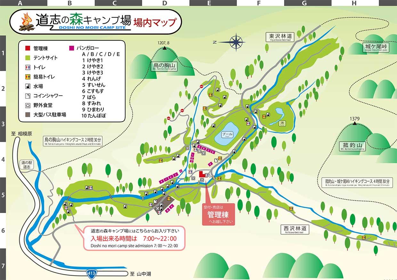 キャンプ 山梨 道 場 の 志村